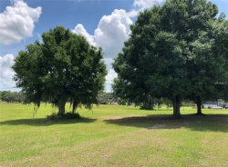 Photo of 12334 Stonelake Ranch Boulevard, THONOTOSASSA, FL 33592 (MLS # T3174210)