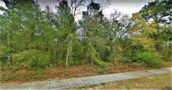 Photo of 0 Little Road, LAND O LAKES, FL 34639 (MLS # T3187896)