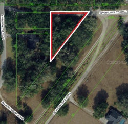 Photo of 17465 Spring Valley Road, DADE CITY, FL 33523 (MLS # T3192560)