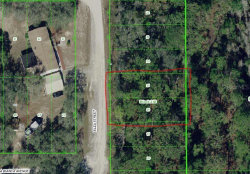 Photo of Lot 25-26 Elza Street, NEW PORT RICHEY, FL 34654 (MLS # T3192913)