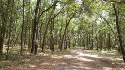 Photo of Lot 0041 Thornhaven Lane, DADE CITY, FL 33523 (MLS # T3193246)