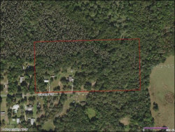 Photo of 8142 Shoupe Road, PLANT CITY, FL 33565 (MLS # T3209969)