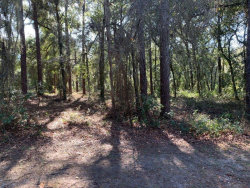 Photo of 0 Sand Hill Road, THONOTOSASSA, FL 33592 (MLS # T3218495)
