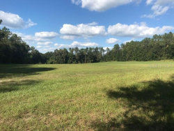 Photo of REED ROAD, DADE CITY, FL 33523 (MLS # T3226885)