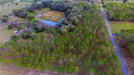 Photo of LOT 64 Pony Pond Road, DADE CITY, FL 33523 (MLS # T3226962)