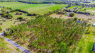 Photo of LOT 68 Pony Pond Road, DADE CITY, FL 33523 (MLS # T3226971)