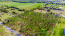 Photo of LOT 67 Pony Pond Road, DADE CITY, FL 33523 (MLS # T3228463)