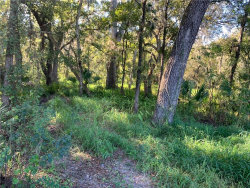 Photo of 5001 State Road 60, DOVER, FL 33527 (MLS # T3246021)