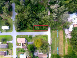 Photo of 21051 School Road, DADE CITY, FL 33523 (MLS # T3271865)