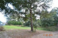 Photo of NT 19150 Adirondack Terrace, DADE CITY, FL 33523 (MLS # T3278532)