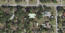 Photo of OXENHAM AVE, SPRING HILL, FL 34610 (MLS # U8000841)