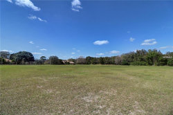 Photo of 7766 Still Lakes Drive, ODESSA, FL 33556 (MLS # U8029600)