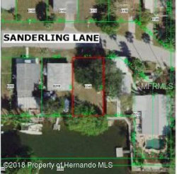 Photo of 6858 Sanderling Lane, HUDSON, FL 34667 (MLS # U8030406)