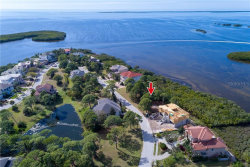 Photo of 2007 Harbour Watch Circle, TARPON SPRINGS, FL 34689 (MLS # U8034839)