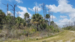 Photo of COPERNICUS RD, NORTH PORT, FL 34288 (MLS # U8041466)
