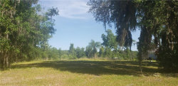 Photo of 17041 Comunidad De Avila, LUTZ, FL 33548 (MLS # U8042911)