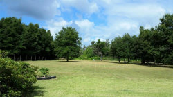 Photo of MOORES LAKE RD, DOVER, FL 33527 (MLS # U8065022)