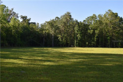 Photo of 6059 Swimming Hole Lane, BROOKSVILLE, FL 34601 (MLS # U8086117)