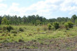 Photo of 280 Volusian Forest Trail, PIERSON, FL 32180 (MLS # V4907451)