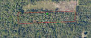 Photo of 720 Old Bubbly Road, PIERSON, FL 32180 (MLS # V4914884)