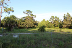 Photo of 15808 Archer Street, HUDSON, FL 34667 (MLS # W7801928)