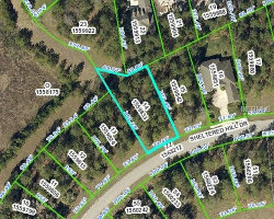 Photo of 0 Sheltered Hill Drive, BROOKSVILLE, FL 34601 (MLS # W7802440)