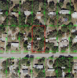 Photo of FARGO, HUDSON, FL 34669 (MLS # W7816261)