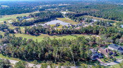 Photo of 19594 Sterling Bluff Way, BROOKSVILLE, FL 34601 (MLS # W7819464)