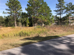 Photo of MIRAGE, BROOKSVILLE, FL 34614 (MLS # W7819952)