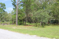 Photo of BOWERY ST, SPRING HILL, FL 34606 (MLS # W7826857)