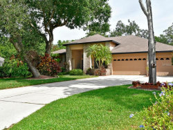 Photo of 11750 Laurel Oak Lane, PARRISH, FL 34219 (MLS # A4186747)