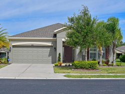 Photo of 4015 90th Avenue E, PARRISH, FL 34219 (MLS # A4402498)