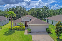 Photo of 9831 50th Street Circle E, PARRISH, FL 34219 (MLS # A4403532)