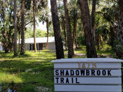 Photo of 1475 Shadowbrook Trail, ENTERPRISE, FL 32725 (MLS # A4404441)