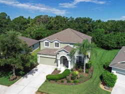 Photo of 8978 Founders Circle, PALMETTO, FL 34221 (MLS # A4406085)