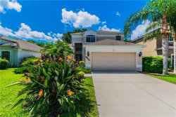 Photo of 8864 Founders Circle, PALMETTO, FL 34221 (MLS # A4407569)
