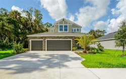 Photo of 7313 Mill Hopper Court, PALMETTO, FL 34221 (MLS # A4408515)