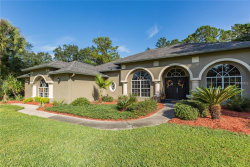 Photo of 9544 Whisper Ridge Trail, WEEKI WACHEE, FL 34613 (MLS # A4418776)