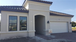 Photo of 9911 Highland Park Place, PALMETTO, FL 34221 (MLS # A4418826)