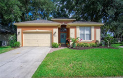 Photo of 892 Cool Springs Circle, OCOEE, FL 34761 (MLS # A4418840)