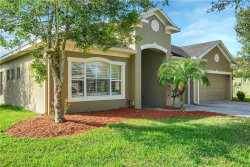 Photo of 16824 Crested Angus Lane, SPRING HILL, FL 34610 (MLS # A4418932)