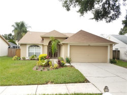 Photo of 9726 Cypress Pond Avenue, TAMPA, FL 33647 (MLS # A4419296)