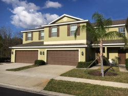Photo of 8504 Zapota Way, TAMPA, FL 33647 (MLS # A4427372)
