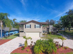 Photo of 7447 N Leewynn Drive, SARASOTA, FL 34240 (MLS # A4427910)