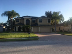 Photo of 12520 Eagles Entry Drive, ODESSA, FL 33556 (MLS # A4447969)