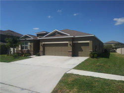Photo of 13741 Bee Tree Court, HUDSON, FL 34669 (MLS # A4463471)