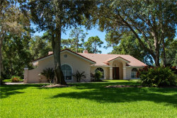 Photo of 7482 Weeping Willow Drive, SARASOTA, FL 34241 (MLS # A4477593)