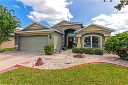 Photo of 11556 Tangle Creek Boulevard, GIBSONTON, FL 33534 (MLS # A4478820)