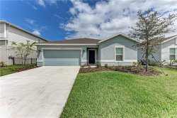 Photo of 8612 Corkscrew Crossing, PARRISH, FL 34219 (MLS # A4478860)