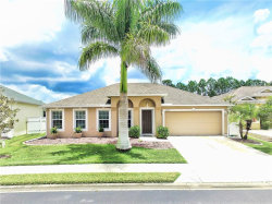 Photo of 2648 Suncoast Lakes Boulevard, PUNTA GORDA, FL 33980 (MLS # C7418634)